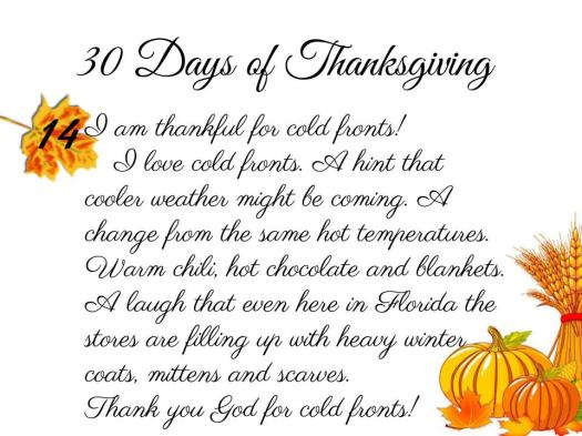 30 Days of Thanksgiving - 14