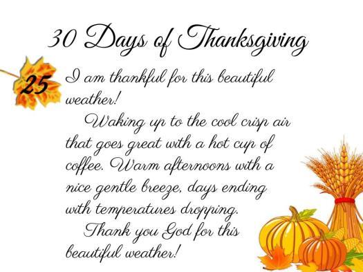 30 Days of Thanksgiving - 25