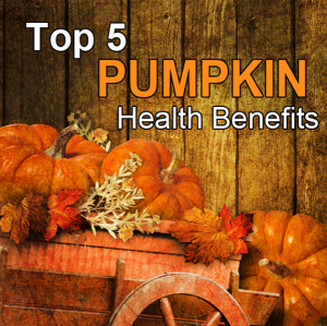 5pumpkin nutrients